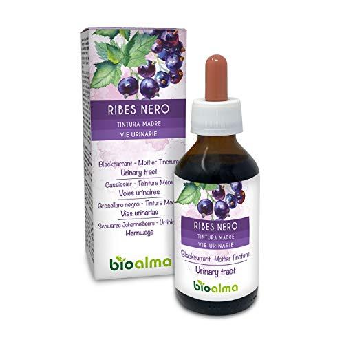 RIBES NERO (Ribes nigrum) foglie e frutti Tintura Madre analcoolica NATURALMA | Estratto liquido gocce | Vie urinarie | Integratore alimentare | Vegano (100 ml)