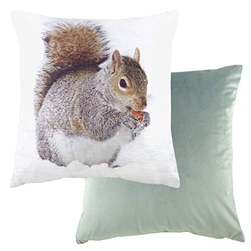 Evans Lichfield - Cuscino imbottito in poliestere, motivo: scoiattolo, multicolore, 43 x 43 cm