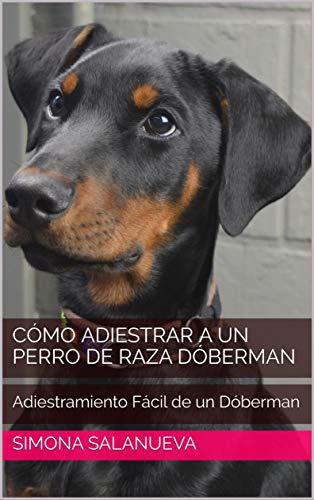 Cómo Adiestrar a Un Perro de Raza Dóberman: Adiestramiento Fácil de un Dóberman