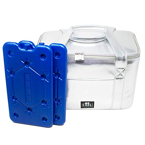 ToCi Be Cool City S Sac isotherme 29 x 18 x 21 cm 10,5 l avec lot de 2 blocs réfrigérants plats de 400 ml (argenté)