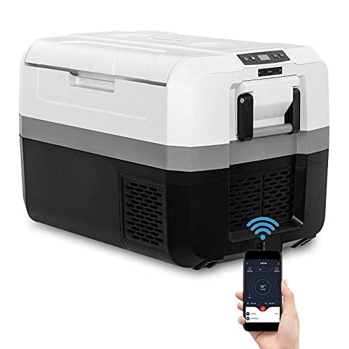 YU YUSING mini Kühlschrank 45L Kompressor Kühlbox mit gefrierfach Elektrisch Bluetooth Gefrierbox Gefrierschrank Klein Tragbar für Comping LKW Auto Zuhause 60W 12V/230V,USB und Steckdose