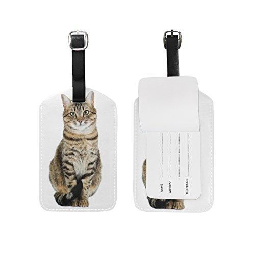 MyDaily Gepäckanhänger mit niedlichem Katzen-Motiv, PU-Leder für Taschen, Koffer, Gepäck, Etikett, 2-teiliges Set