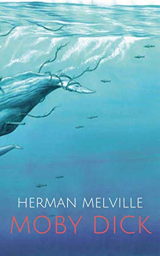 Moby Dick (English Edition)