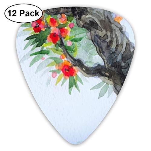 Slaytio Klassische Gitarre Auswahl für E-Gitarre, Akustikgitarre, Mandoline und Bass, Frühjahrsblühen eines Alten Baumes (3 Arten von Dicke, 12 Stück), weiß, Einheitsgröße