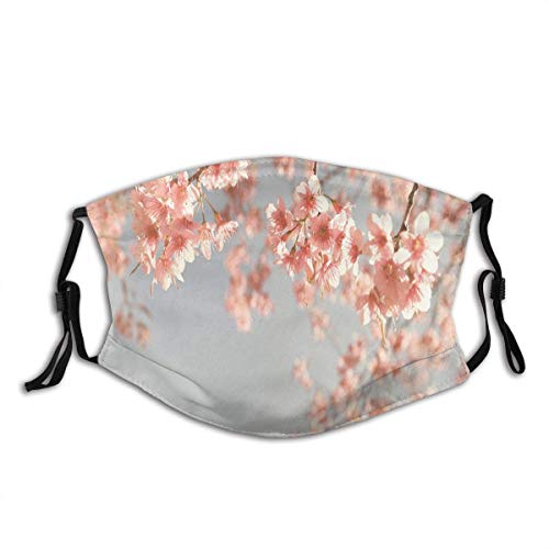 Face mask reusable Japanese Scenery Sakura Tree Cherry Blossom Nature Photography Coming of Spring Balaclava Unisex Reusable Windproof Anti-Dust Mouth Bandanas Made in USA