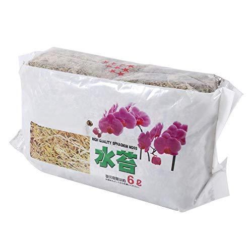 Lichen sec 20 x 11 cm / 7,9 x 4,3 pouces Sphagnum Moss Phalaenopsis Sphagnum Moss Hydratant Nutrition pour les plantes Phalaenopsis Fleurs d'orchidées Jardinage