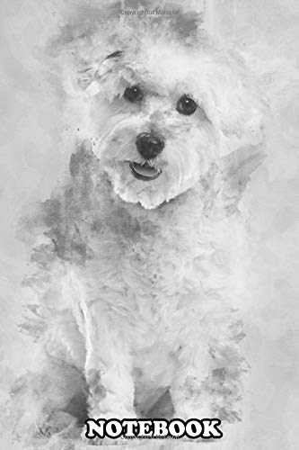 """Notebook: Coton De Tulear 22 Months Old Sitting And Looking At Ca , Journal for Writing, College Ruled Size 6"""" x 9"""", 110 Pages"""