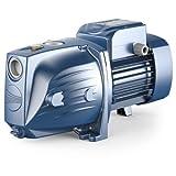 Pedrollo - Bomba de agua JSW2CX 0,75 KW hasta 4,2 m3/h trifásico 380V