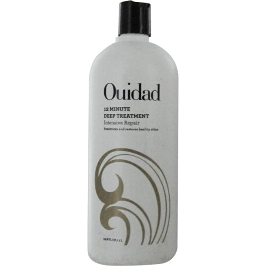 独裁汚染する基本的なウィダッド Deep Treatment Curl Restoration Therapy (Curl Essentials) 1000ml/33.8oz並行輸入品