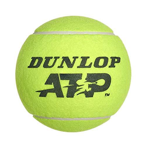 Dunlop 10288327 Palla Gigante Atp 9 Pollici, Multicolore