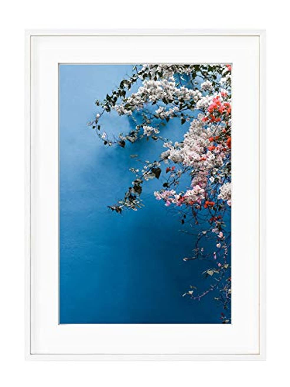Bougainvillea 1 White Lacquer Wooden Frame with Mount, Multicolored, 40x50