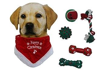 Lot de 6 jouets couineurs pour chien de petite et moyenne taille + 1 écharpe de Noël pour chiens de petite et moyenne taille