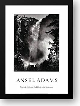 BridalVeil Falls 28x40 Framed Art Print by Adams Ansel
