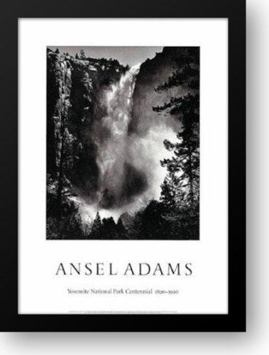 BridalVeil Falls 28x40 Framed Art Print by Adams, Ansel