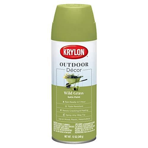 Krylon K09334000 Outdoor Décor Spray Paint, Wild Grass