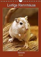 Lustige Rennmaeuse (Wandkalender 2022 DIN A4 hoch): Liebenswerte Heimtiere (Planer, 14 Seiten )
