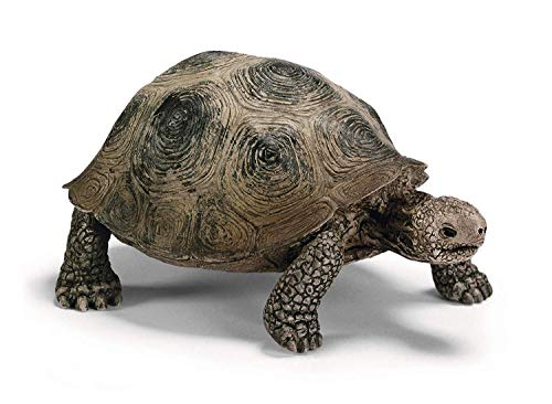 Schleich 14601 - Riesenschildkröte