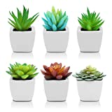 Pack of 6 - Mini Fake White Ceramic Potted Succulents Artificial Plants - Faux Succulents Plants for Home , Office Shelf Decorations