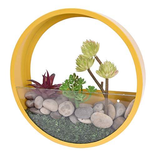 Round glass wall vase planter