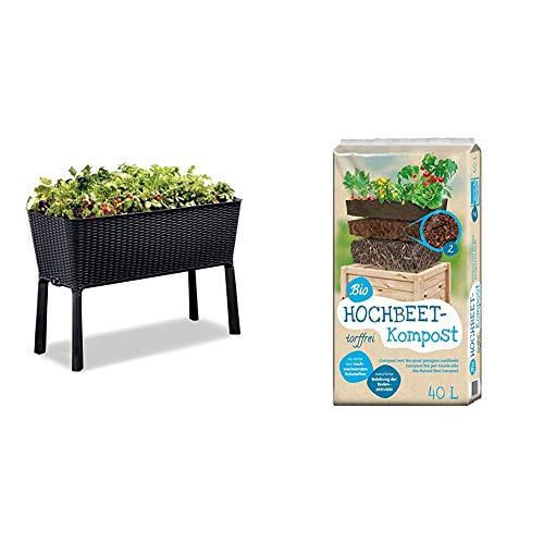 Keter Hochbeet Easy Grow, Graphit, inkl. Bewäserungssystem & Universal Bio Hochbeet-Kompost 40 Liter
