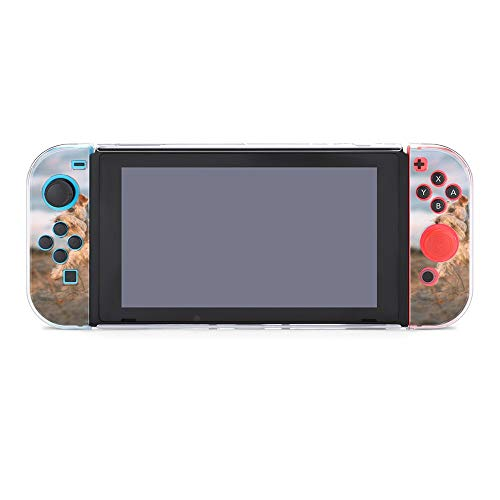 Funda para Nintendo Switch Schnauzer Running on Sand Juego de 5 piezas Funda protectora compatible con Nintendo Switch Game Console