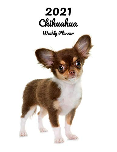 2021 Chihuahua Weekly Planner: 14 Months | 124 pages 8.5x11 in. | Diary | Organizer | Agenda | Appointment | Calendar | For Dog Lovers