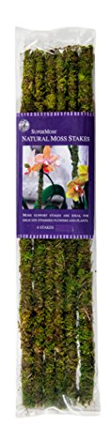 SuperMoss (22050) Moss Stakes Preserved, Fresh Green, 18
