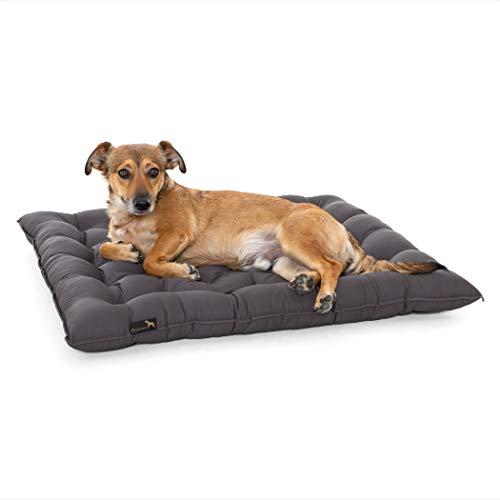 Pointer | Hundekissen Urban - orthopädisch, waschbar, robust, bequem (XL - 70x60 cm, Grau)