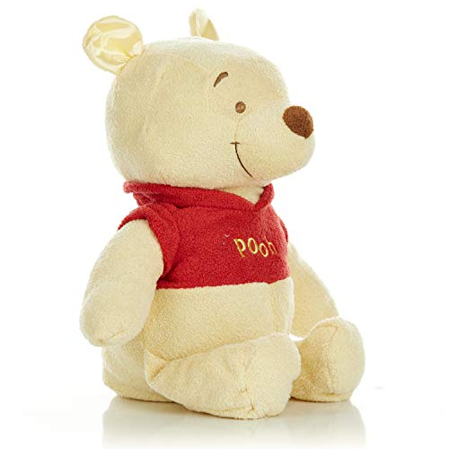 Disney Baby Winnie The Pooh Stuffed Animal Plush Toy Floppy Favorite, 16 inches