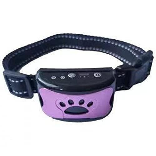 Halsband Hund, Sound und No-Schock für Kleine Mittelgroße Hunde Lila