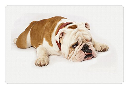 Ambesonne English Bulldog Pet Mat for Food and...