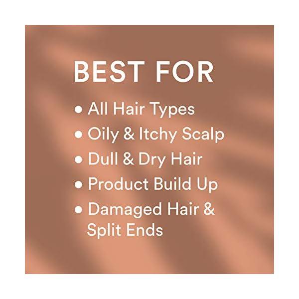 Beauty Shopping WOW Apple Cider Vinegar Shampoo & Hair Conditioner Set – (2 x 16.9 Fl Oz