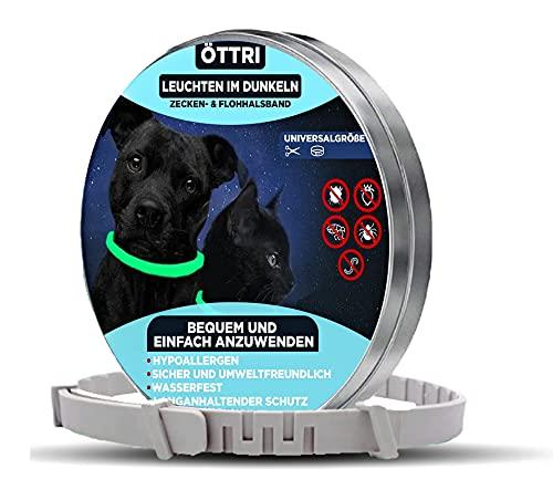 Zeckenhalsband für Hunde und Katzen | Leuchtendes Präventionshalsband gegen Parasiten mit bis zu 8-Monatigen Schutz | Fluoreszierendes Halsband universell auf Jede Größe verstellbar