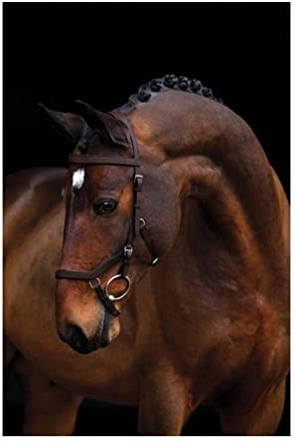 Horseware Ireland Rambo Micklem Comp 2021 model Havana Dark Max 75% OFF rein Bridle Sta