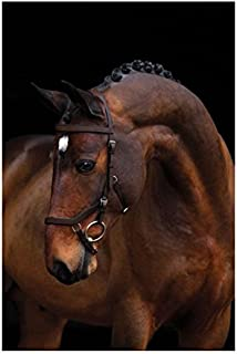 Horseware Ireland Rambo Micklem Comp Bridle/rein Dark Havana Standard Horse
