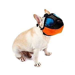 Bwogue Muselière réglable avec Buckle-anti écorce Bite Dog Masque de bouche pour court Nez–Flat Face Chiens