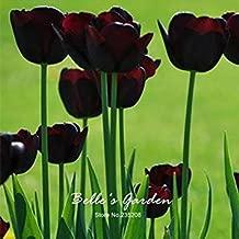 5pcs Rare Dark Purple Tulip Bulbs Bonsai Tulip Flower Tulipa 'Night Queen' Home Garden Potted Plants Perennial Flower Bulbs