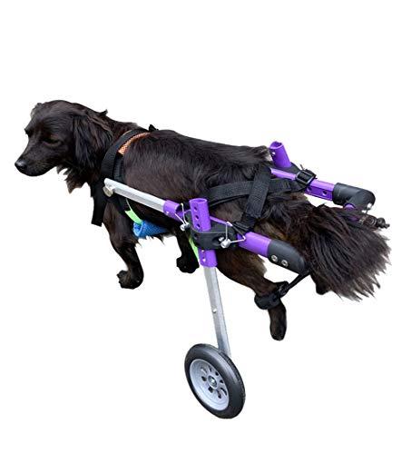 Cora Pet Hunderollstuhl für Kleine Hunde, Hund Hinterbein/Hintere Füße, Rollstuhl Gehhilfe Hundegehilfe Hunderollwagen, Dog Wheelchair für Haustier von 1~20 kg