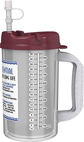 32 oz Insulated Cold Drink Mug with Electron Burgundy Lids WE