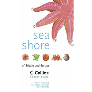 Collins Pocket Guide – Sea Shore of Britain and Europe