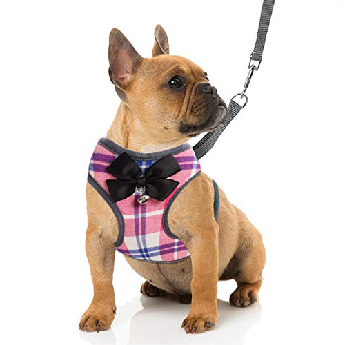 RYPET Small Dog Harness and Leash Set - Dog Harness No Pull Pet Harness with Soft Mesh Nylon Vest for Small Dogs and Cats Pink M