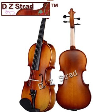 D Z Strad Violin Model 100 with Solid Wood Full Size 4/4 with Case, Bow, and Rosin (4/4 - Size)