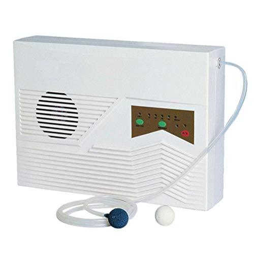 Multifunctionele Ozon Air Filter, Water En Lucht Dual-Use Luchtreiniger Met Timing Controle Negatieve Afstandsbediening Ion En Wall Mount-Functie Voor Sterilisatie
