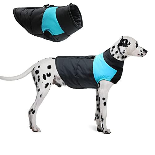 Perro Chaqueta Otoño Invierno,Ropa Mascotas Abrigada Algodón,Abrigo Perro Cálido Proteccion,Abrigo aprueba de Agua de Perro para Invierno Ropa (Azul, 2XL)