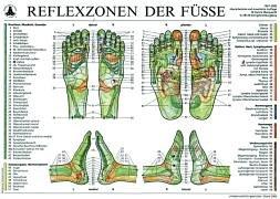 Reflexzonen der Füße (Tafel A2): Mit Beiheft: