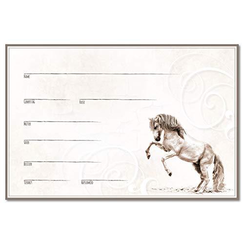 ZAUBERBILD Boxenschild Stallschild Stalltafel Namensschild Pferd 'Andalusier, Lusitano, Spanier' 20x30cm Alu