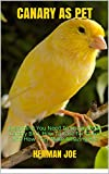 CANARY AS PET: Everything You Need To Know About Canary Bird. How To Care For Them And How They Make Amazing Pet