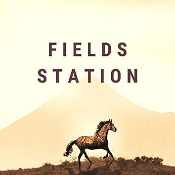 Fields Station