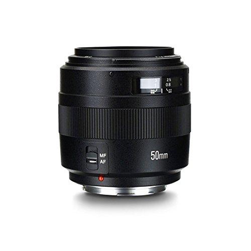 YONGNUO Standard Prime Lens YN50mm F1.4 AF/MF 0.45M Lens for Canon DSLR Camera