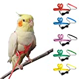 VANFAVORI Adjustable Bird Harness Leash Kit,Outdoor Flying Training Rope for Small Parrots(Colors May Vary)